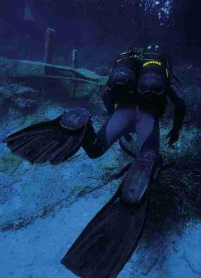 normal_diver